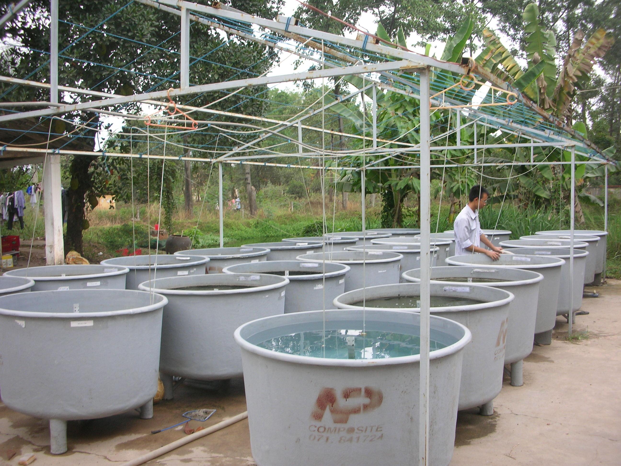 Aquaculture Testing Facility Vietnam